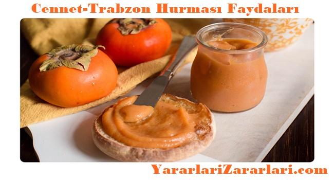 Cennet-Trabzon Hurması Faydaları