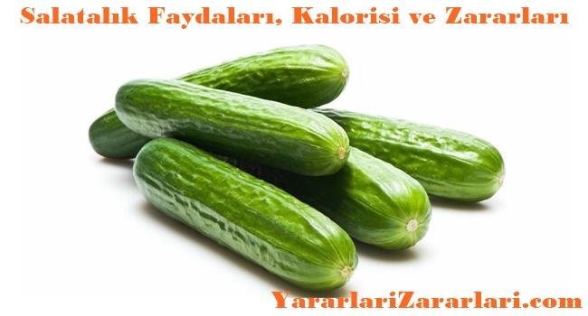 Salatalık Faydaları ve zararları