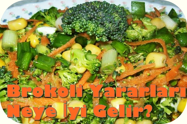 brokoli yararlari