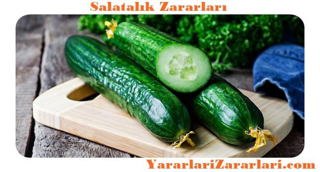 salatalik-kimlere-zararli