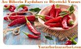 Acı Biberin Faydaları, Kalorisi, Vitaminleri ve Diyetteki Yararı